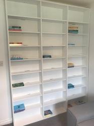 blogmas bookshelves