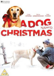 blogmas dog named christmas